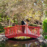 Bride and Groom standing on bridge in zen garden at the Langham Huntington Hotel