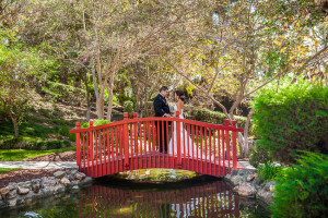 Bride and Groom standing on bridge in zen garden during wedding at the Langham Huntington Hotel