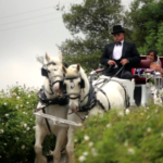 Bride in Horse Drawn Carriage during her Wedding Ceremony